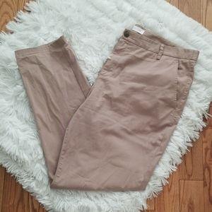 Everlane Men's Tan Midweight Straight Chino Pants